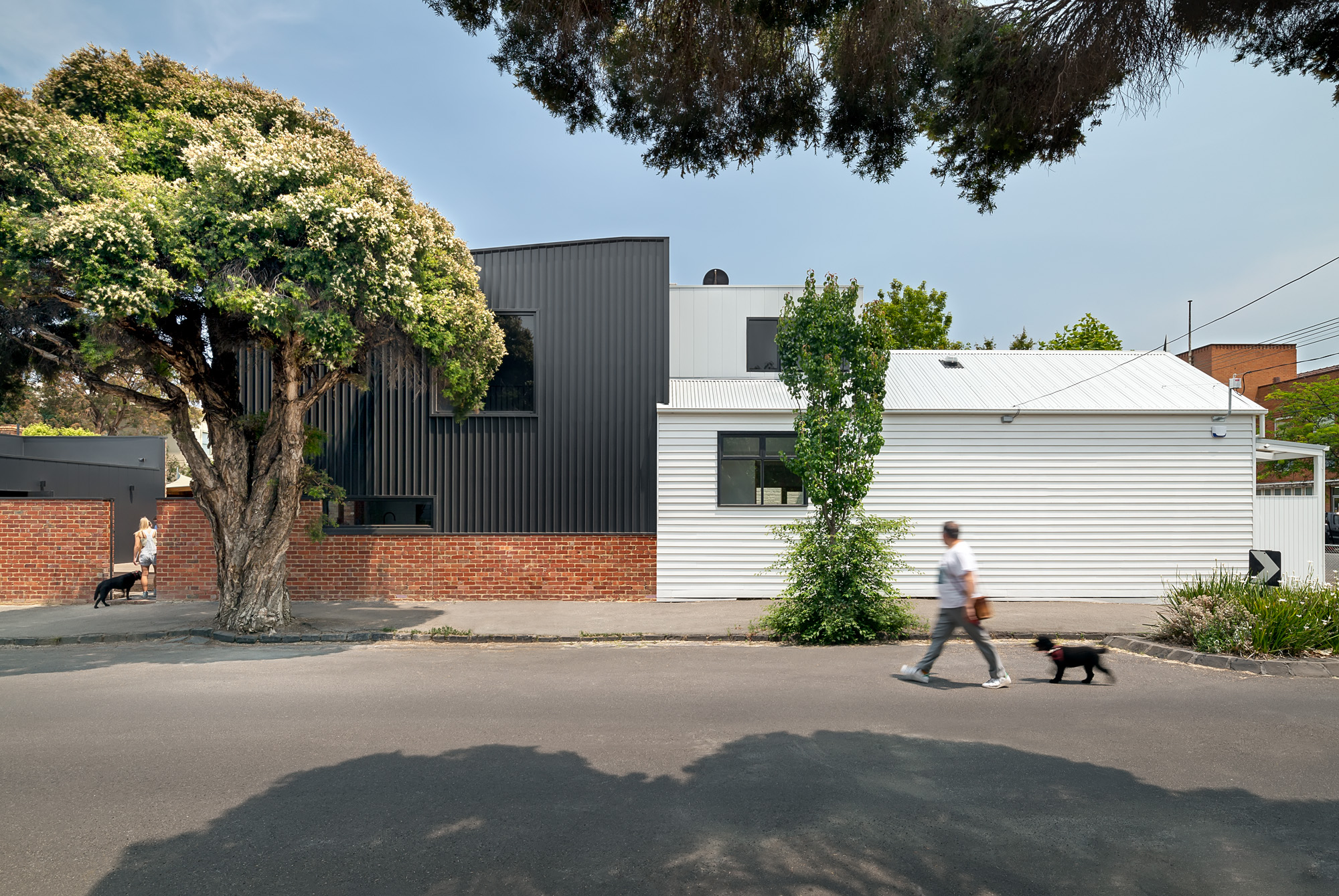 3 sides to this little black and white house: Cathi Colla Architects
